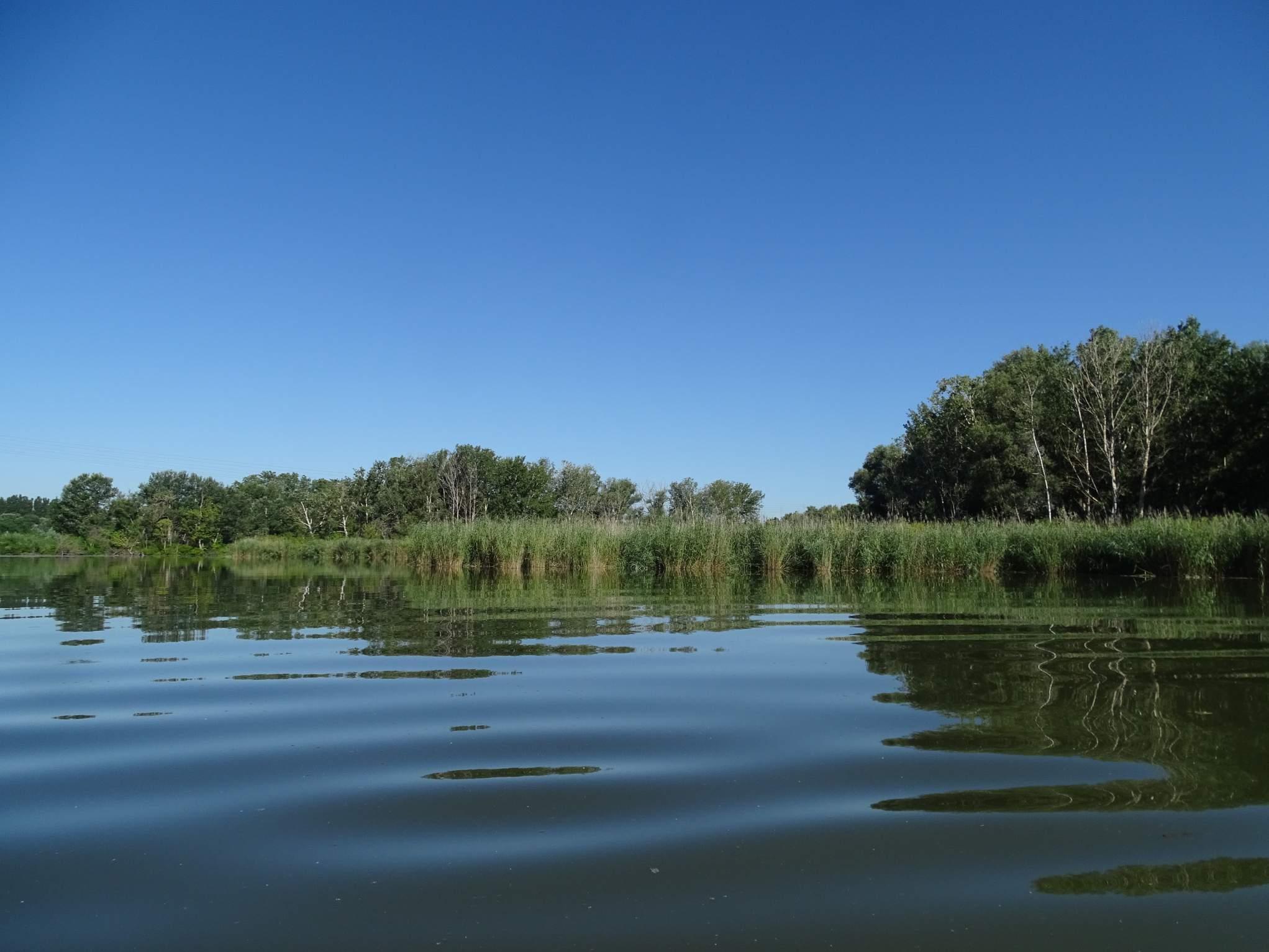 Marais Ile Vieille