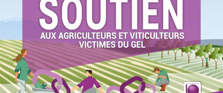Soutien aux agriculteurs et aux viticulteurs victimes du gel